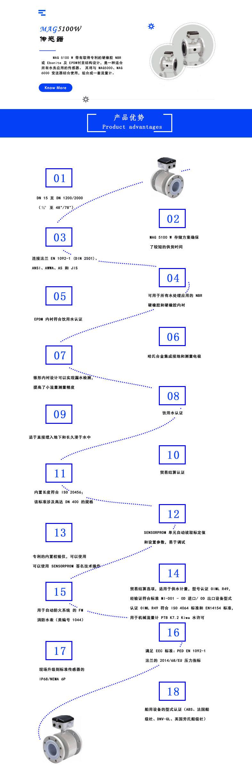 MAG5100W 传感器-大连莱立佰信息技术有限公司
