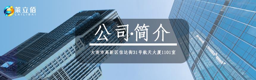 公司简介-大连莱立佰信息技术有限公司